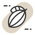 Demand in the cocoa sector icon